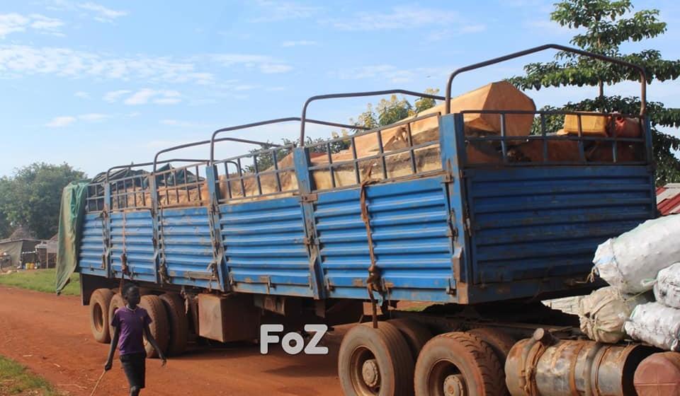 Adjumani district fails to enforce Gen. Ali's directives on logging
